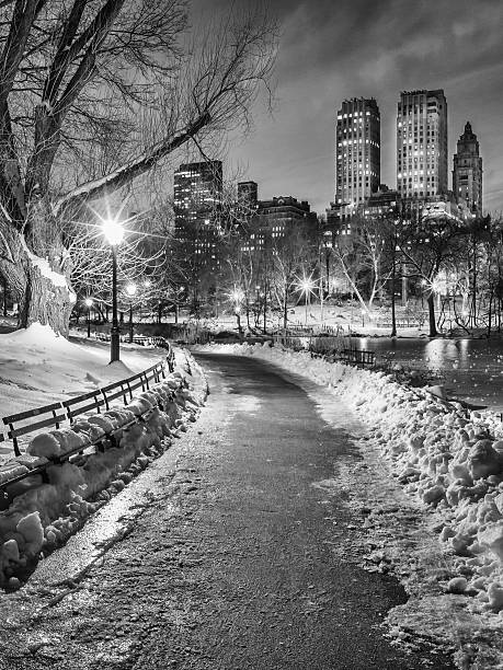 Central Park Path Night Black & White Wall Art