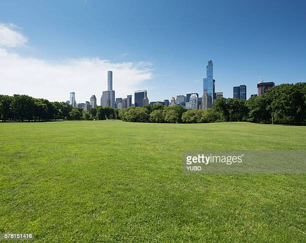 central park - natural parkland stock pictures, royalty-free photos & images