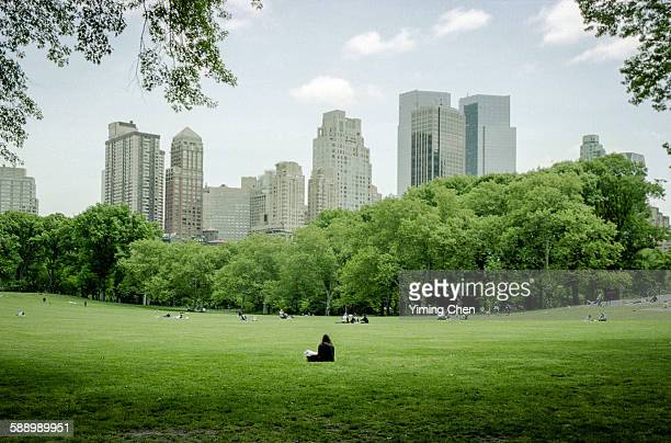 central park - central park stock pictures, royalty-free photos & images