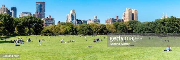central park sheep meadow, summer day panoramic view - central park stock pictures, royalty-free photos & images