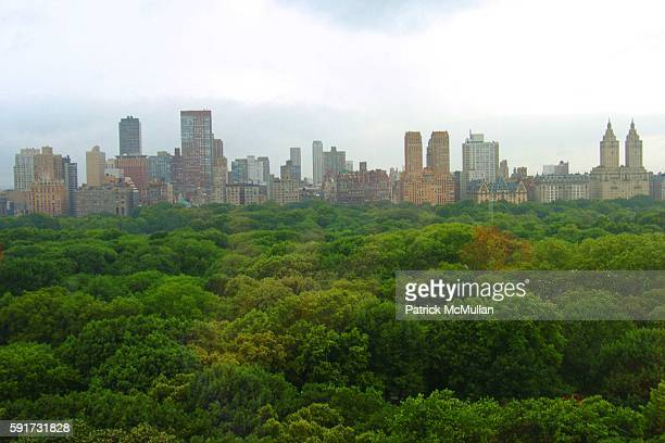 Central Park Skyline== ASHLEY SCHIFF hosts a book party for WENDY BOUNDS' new book Little Chapel on the River Ashley Schiff's Home NYC== June 29...