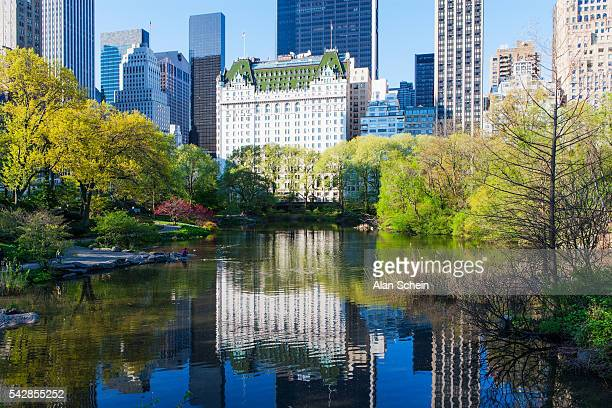 Central Park. South. Plaza Hotel.