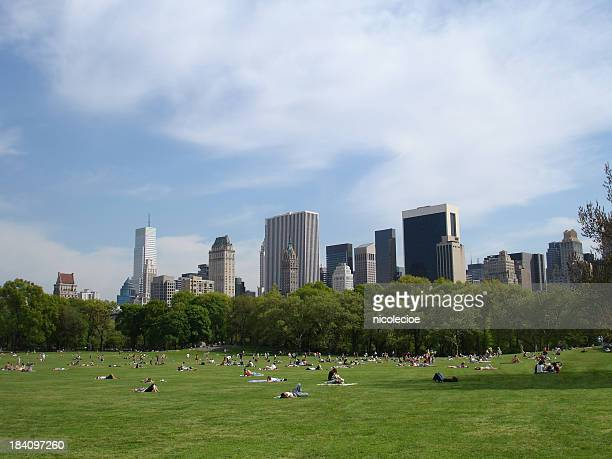 Central Park Sunbathers