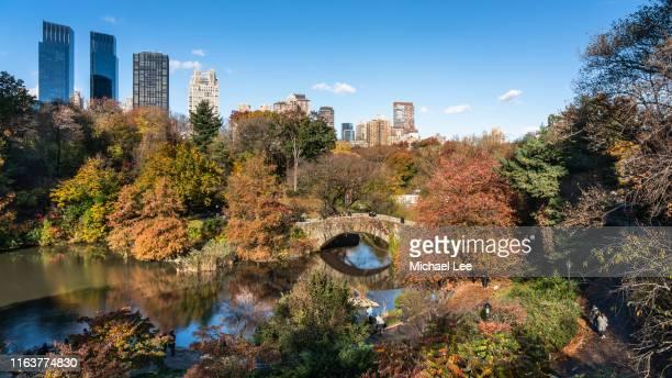 central park with autumn colors - new york - central park manhattan - fotografias e filmes do acervo