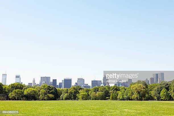 central park with manhattan skyline, new york city, usa - 公園 ストックフォトと画像