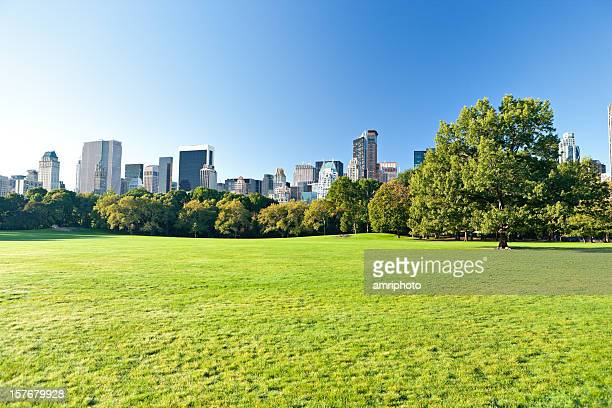 central park with manhattan skyscrapers behind - central park stock pictures, royalty-free photos & images