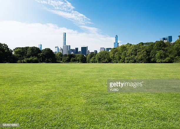 central park-grassland - public park stock photos and pictures