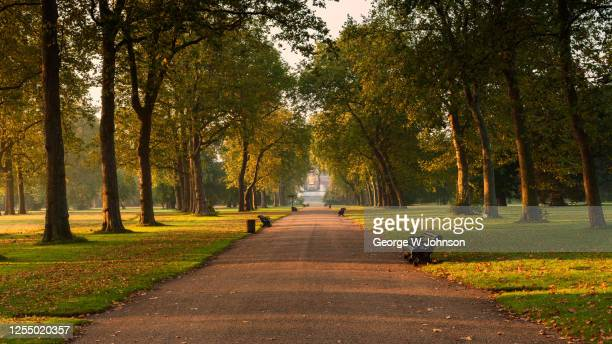 central pathway i - hyde park london stock pictures, royalty-free photos & images