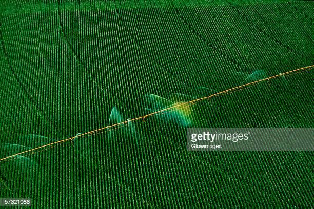 Central pivot irrigation system, shot from above, Nebraska