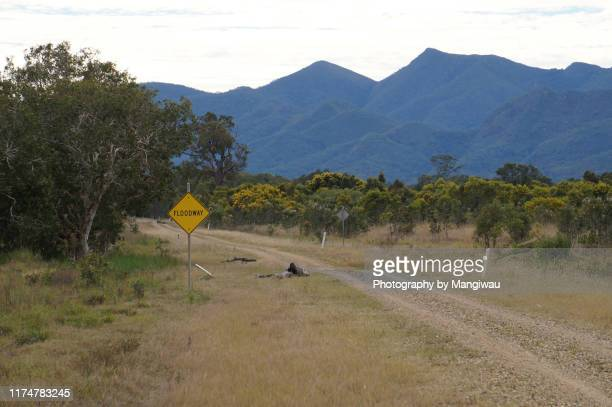 central queensland cattle country - townsville queensland stock pictures, royalty-free photos & images