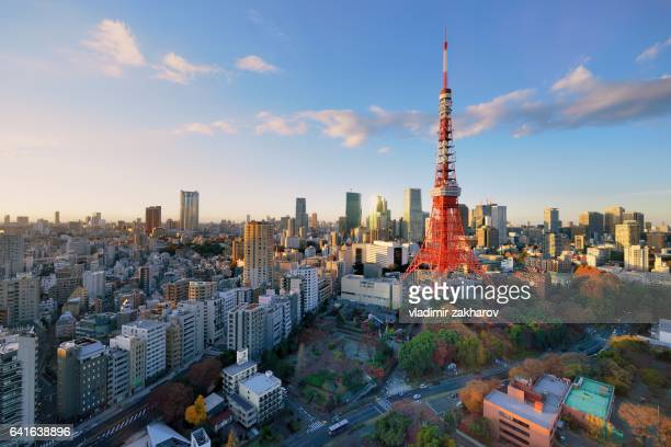 Central Tokyo cityscape view at sunset