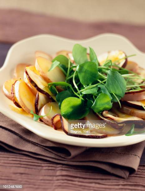 cep carpaccio - raw food diet stock pictures, royalty-free photos & images