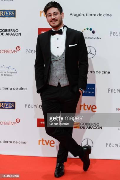 Cepeda attends the 23rd edition of Jose Maria Forque Awards at Palacio de Congresos on January 13 2018 in Zaragoza Spain