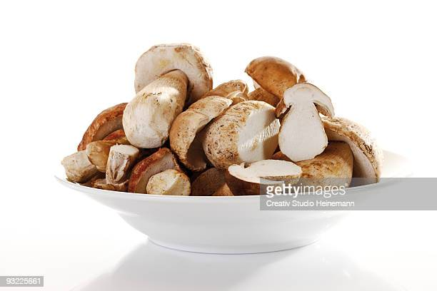 Ceps in bowl on white background, close-up