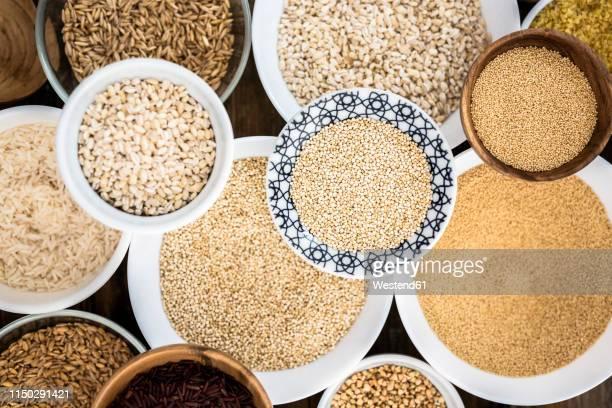 cereal mix: red rice, black rice, barley, amaranth, quinoa, rice, bulgur, spelt, oats and buckwheat - bulgur bildbanksfoton och bilder
