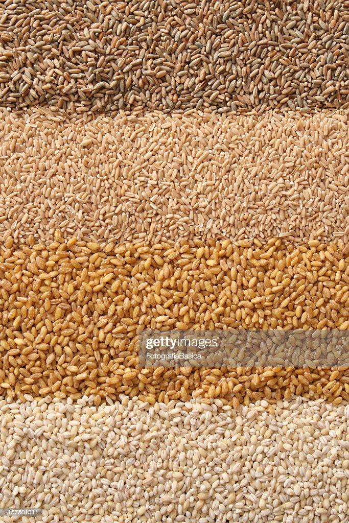Cereals : Stock Photo