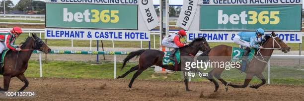 Cerebellum ridden by Damien Thornton wins the Geelong Homes FM Maiden Plate at Geelong Synthetic Racecourse on July 23 2018 in Geelong Australia