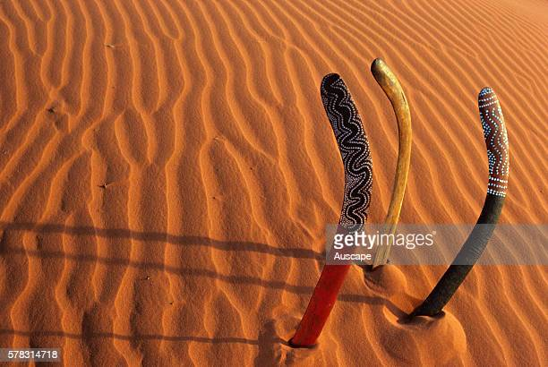 Ceremonial boomerangs displayed in sand Central Australia