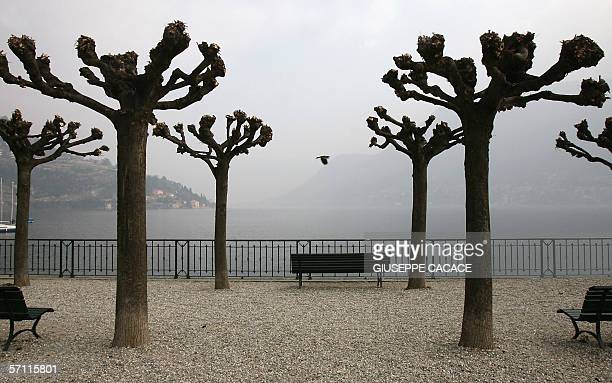 Picture taken 17 March 2006 of the shores of Italy's Lake Como in Cernobbio US film stars Brad Pitt and Angelina Jolie are rumored to be planning...