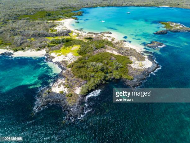 cerro brujo beach at san cristobal island, galapagos, ecuador - galapagos islands stock pictures, royalty-free photos & images