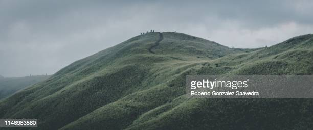 cerro pelado - pelado stock pictures, royalty-free photos & images