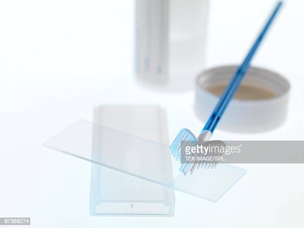 cervical smear test equipment - pelvic exam stock photos and pictures