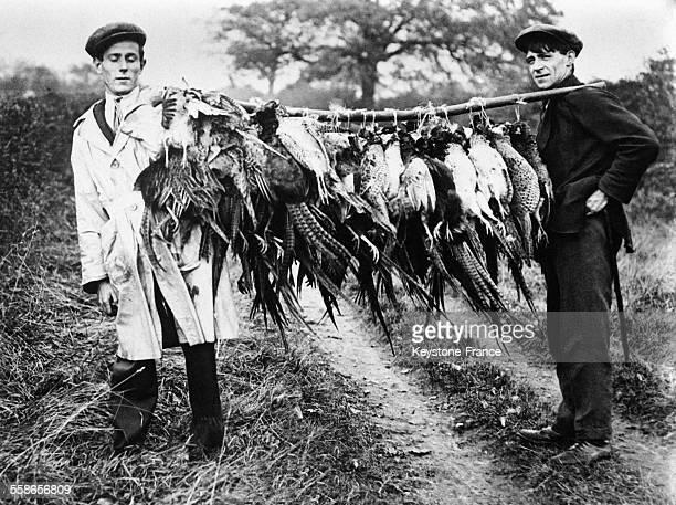 Ces jeunes hommes montrent tous les faisans qu'ils ont chassés et attachés à un but de bois le 18 novembre 1930