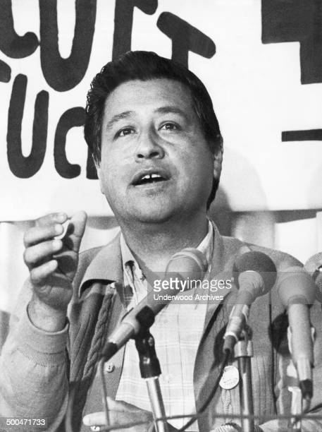 Cesar Chavez leader of the United Farm Workers Union announces at a news conference that they have started a boycott of lettuce growers because they...