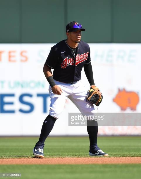 Cesar Hernandez of the Cleveland Indians gets ready to make a play at second base against the Chicago Cubs during a spring training game at Goodyear...