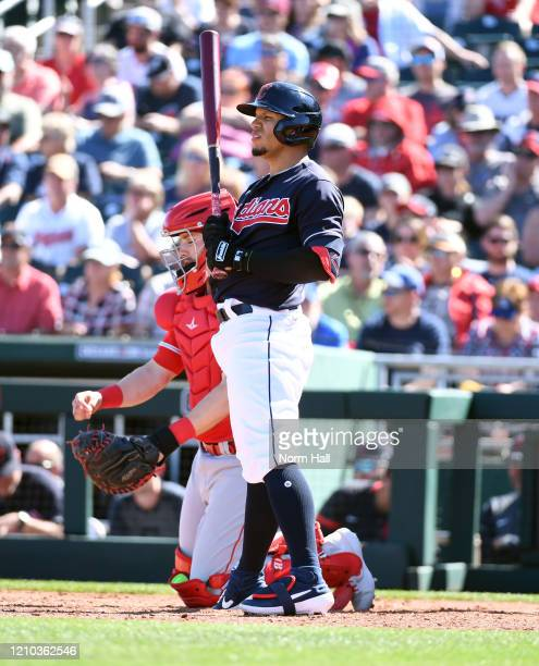 Cesar Hernandez of the Cleveland Indians gets ready to step into the batters box against the Los Angeles Angels during a spring training game at...