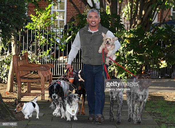 Cesar Millan attends photocall to launch his UK tour at Soho Hotel on November 25, 2009 in London, England.