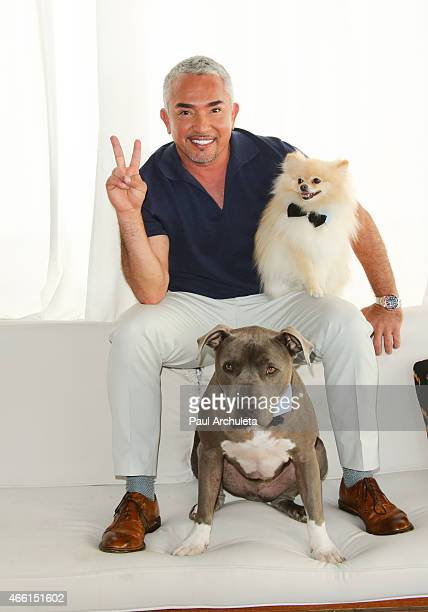 """Cesar Millan celebrates season 2 of """"Cesar 911"""" on Nat Geo Wild at SkyBar at the Mondrian Los Angeles on March 13, 2015 in West Hollywood, California."""