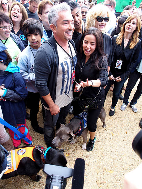 Cesar Millan (C), host of the National Geographic Wild