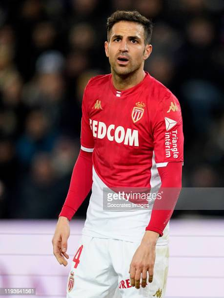 Cesc Fabregas of AS Monaco during the French League 1 match between Paris Saint Germain v AS Monaco at the Parc des Princes on January 12 2020 in...