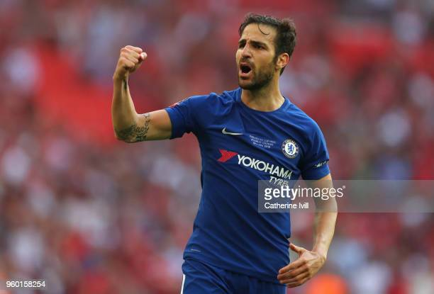 Cesc Fabregas of Chelsea celebrates his sides victory following The Emirates FA Cup Final between Chelsea and Manchester United at Wembley Stadium on...