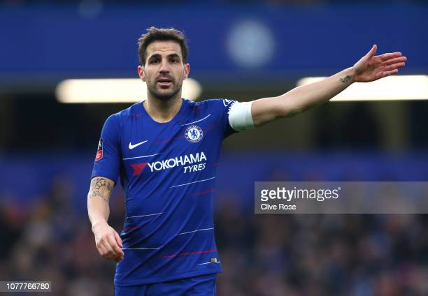 Cesc Fabregas of Chelsea reacts during the FA Cup Third Round match between Chelsea and Nottingham Forest at Stamford Bridge on January 5 2019 in...