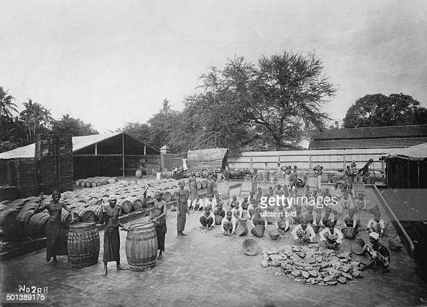 Ceylon graphite mining Sorting of the raw graphite probably in the 1910s