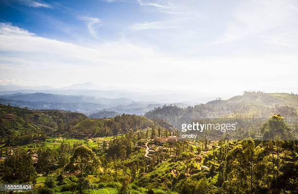 Ceylon Highlands near Nuwara Eliya