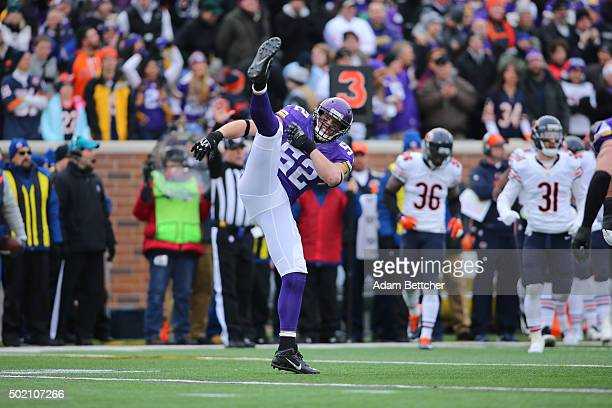Chad Greenway of the Minnesota Vikings celebrates his sack of Jay Cutler of the Chicago Bears in the first quarter on December 20 2015 at TCF Bank...