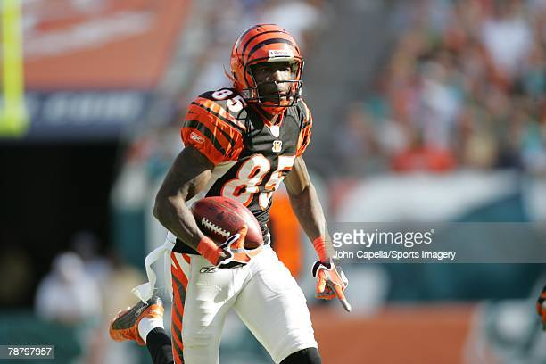Chad Johnson of the Cincinnati Bengals caries the ball during the NFL game against the Miami Dolphins at Dolphin Stadium on December 30 2007 in Miami...