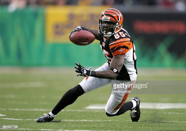 Chad Johnson of the Cincinnati Bengals carries the ball during the NFL game with the Buffalo Bills at Paul Brown Stadium on December 24 2005 in...