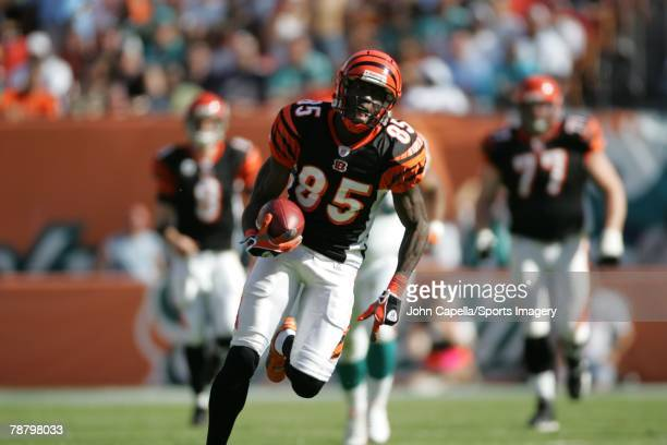 Chad Johnson of the Cincinnati Bengals carries the ball during the NFL game against the Miami Dolphins at Dolphin Stadium on December 30, 2007 in...