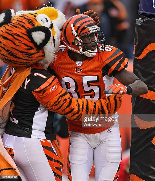 Chad Johnson of the Cincinnati Bengals celebrates with the Bengals mascot after catching a touchdown pass during the NFL game against the Tennessee...