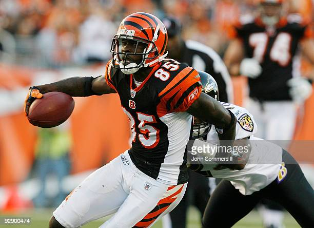 Chad Ochocinco of the Cincinnati Bengals fights to break free from Domonique Foxworth of the Baltimore Ravens at Paul Brown Stadium November 8 2009...
