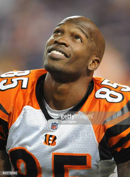 Chad Ochocinco of the Cincinnati Bengals pauses during warmups at an NFL game against the Minnesota Vikings at the Mall of America Field at Hubert H....