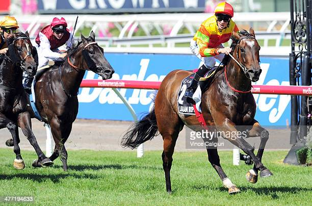 Chad Schofield riding Lankan Rupee wins Race 6 the Lexus Newmarket Handicap during Australian Cup Day at Flemington Racecourse on March 8 2014 in...
