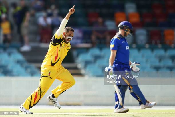 Chad Soper of Papua New Guinea celebrates taking the wicket of Aiden Blizzard of ACT during the T20 warm up match between ACT and Papua New Guinea at...
