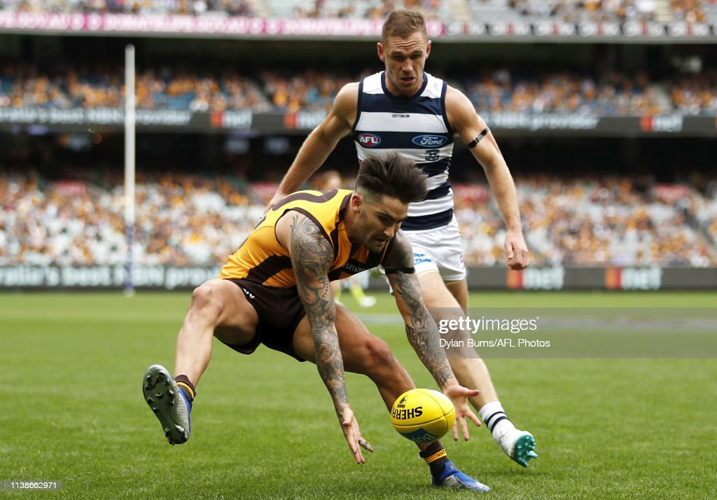 AFL Rd 5 - Hawthorn v Geelong : News Photo