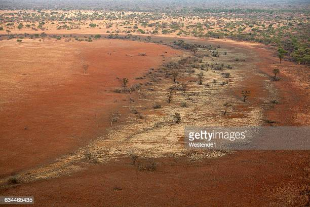 Chad, Zakouma National Park, trees in the middle of the steppe