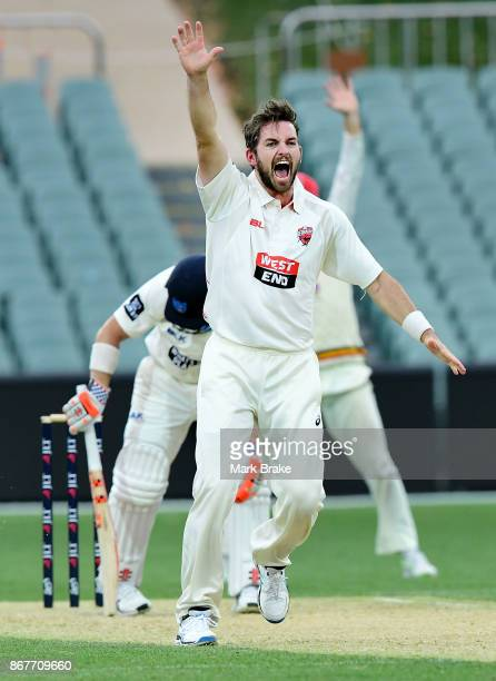 Chadd Sayers of South Australia appeals for LBW against David Warner of New South Wales during day three of the Sheffield Shield match between South...